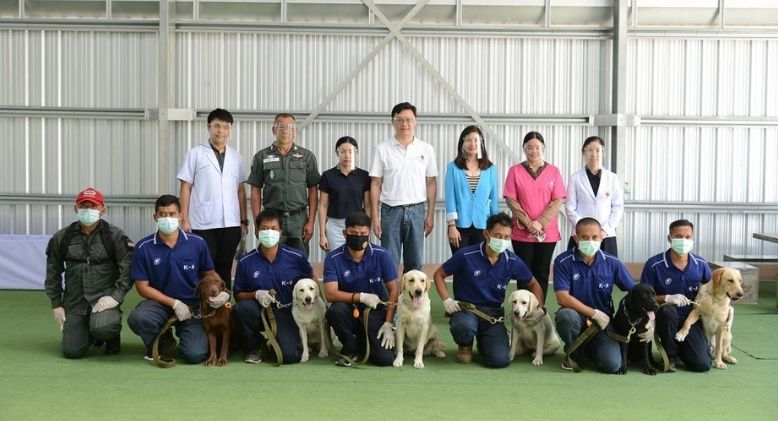 Six Dogs in Thailand Are Able to Sniff Out Covid-19 Patients in Two Seconds