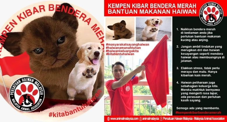 Fly a Red Flag and Help Save Your Pet