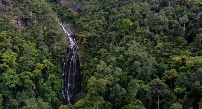 Selangor Government to Re-gazette Kuala Langat North Forest Reserve